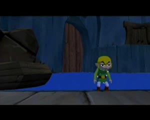 Link in the fortress